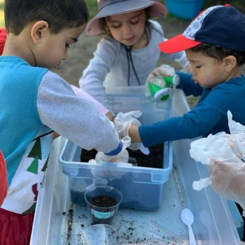 planting-seeds-experiment-gardening-popsicle-land